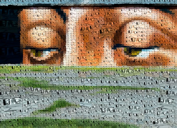 Photo Mosaic Art Photography | Online Photography Store