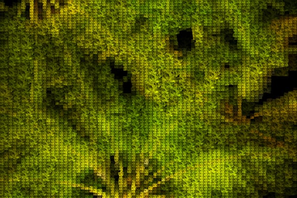 Palm Fronds | Photomosaic Photography