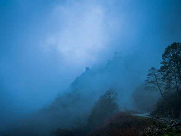 Lone Foggy Road in Bhutan | Mountain Landscape Photography Print