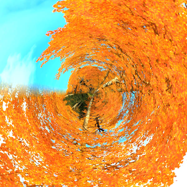 Golden Aspens | Tiny Planet Art Photography