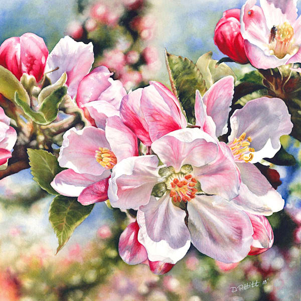 Springtime Blossoms Glowing Original Watercolor Painting. Prints and canvas wraps available.
