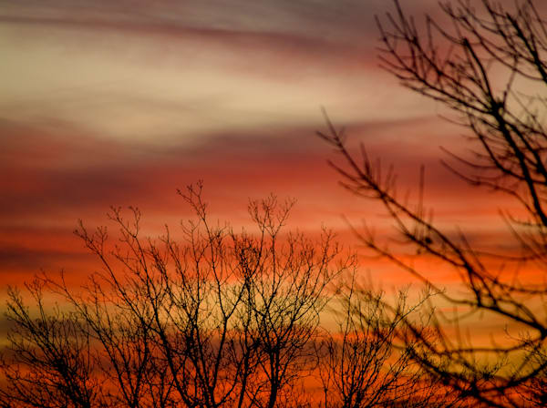 Rouge Sunset Wildlife | Sunset Photography Print
