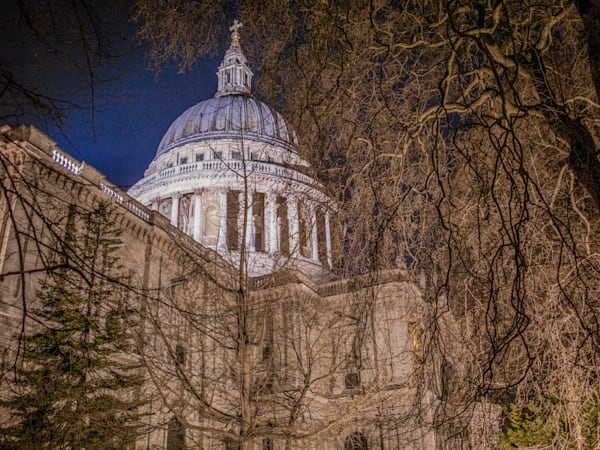 Dome Behind The Trees | London Art Photography Print