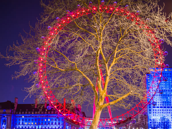 London Eye Autumn Tree | London Art Photography Store