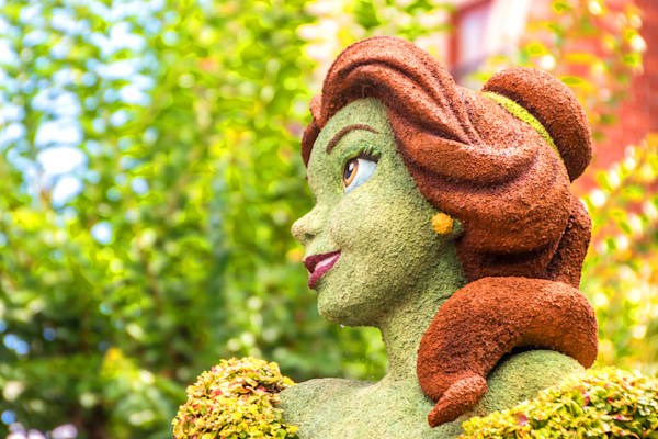 Topiary Belle - Epcot F&G Gallery | William Drew