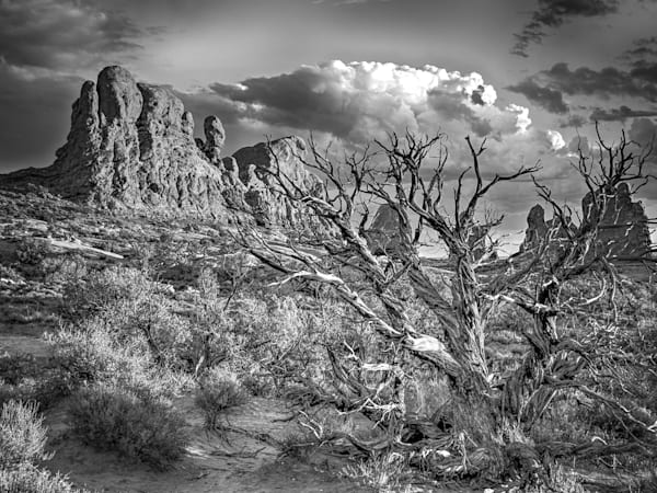 Black & White Landscape Photos | Online Art Photography Store