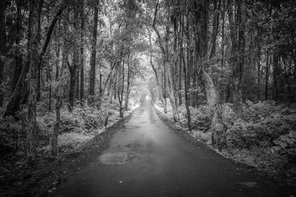 | Black and White Landscape Photography