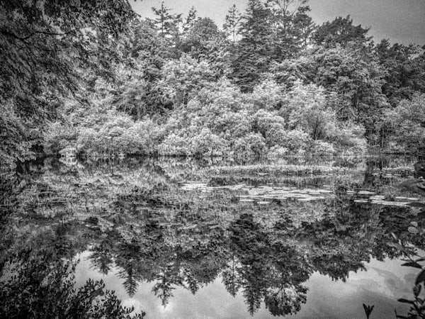 Lucious Lake   Black and White Landscape Photography