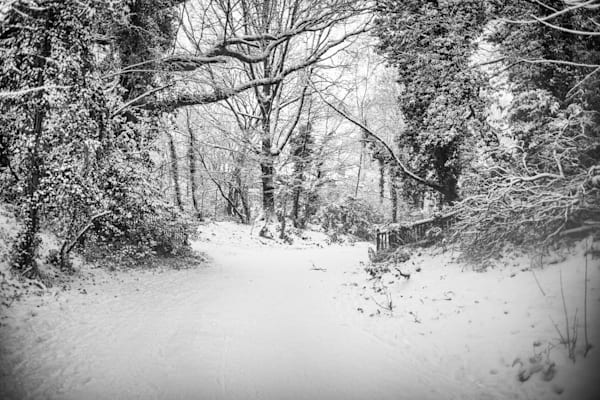 Snowy Path in Hampstead Heath | Black and White London Photography