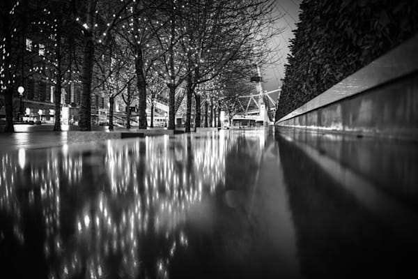 Tree Lined Reflection | Black and White London Photography