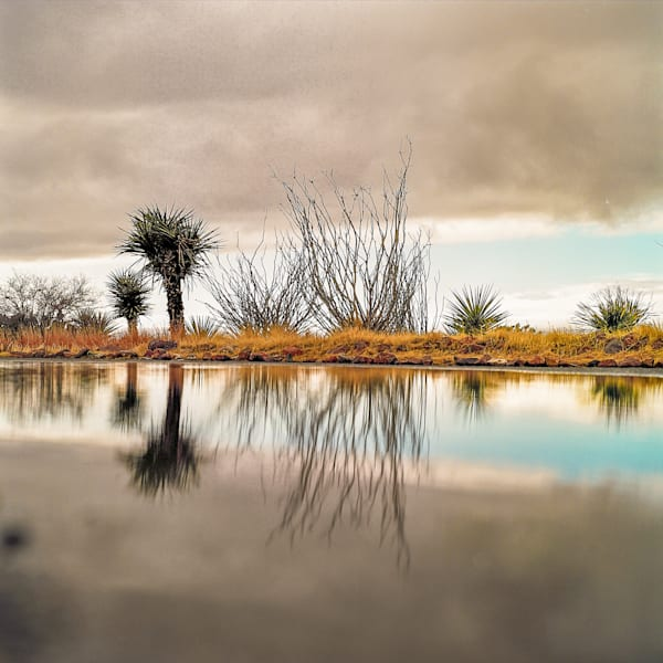 Morning Desert Rain Reflection | Desert Landscape Photography Print