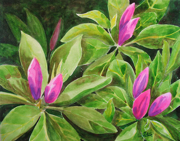 Azalea Art | Michele Tabor Kimbrough