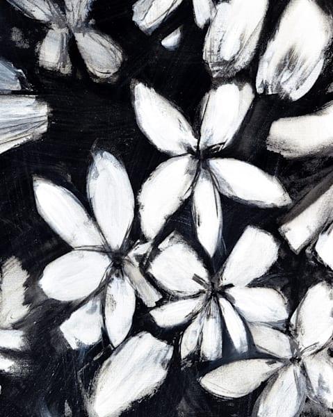 Black & White Blizzard I