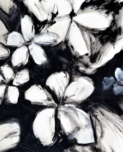 Black & White Blizzard II