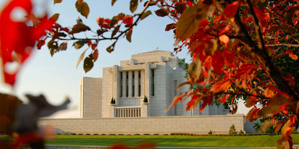 Cardston Temple - Fall Leaves