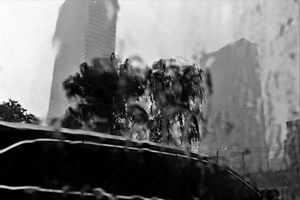 Modern in the rain