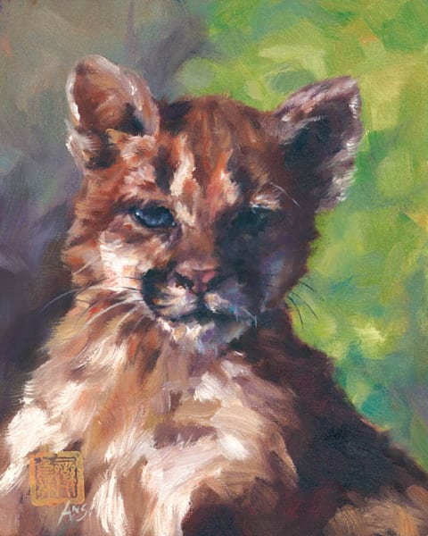 Cougar Cub LiBi is an original oil painting by Ans Taylor, it depicts an abandoned cub that found a new home in Out Of Africa