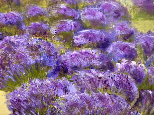 Lavender Fields Iv Art | Studio Artistica