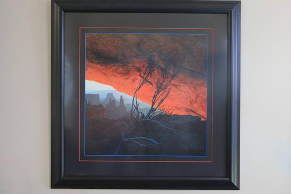 Burning Bush  Framed/matted