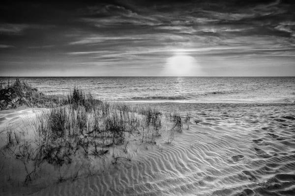 Coastal Sand Dune