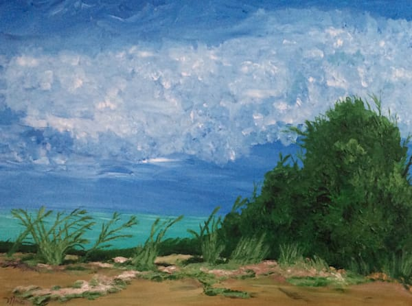 Grassy Beach, By Marci Brockmann   Marci Brockmann Author, Artist, Podcaster & Educator