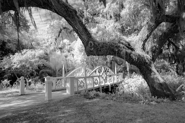 Tranquility Bridge photographed in infrared.