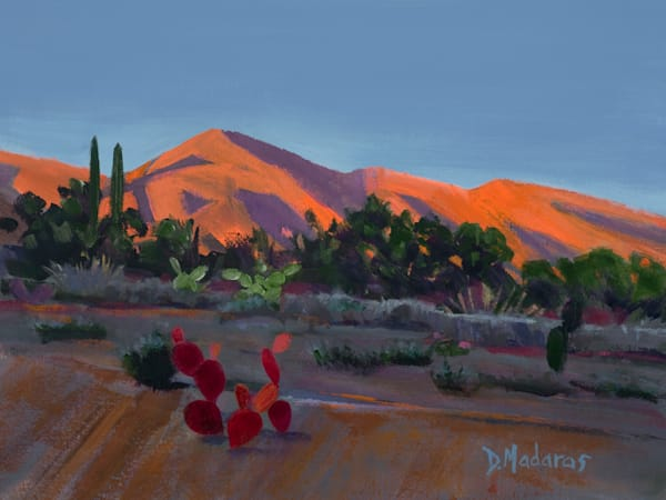 Catalinas at Sunset | Art Print