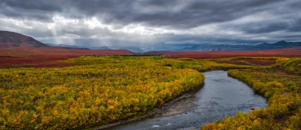Tundra Fall