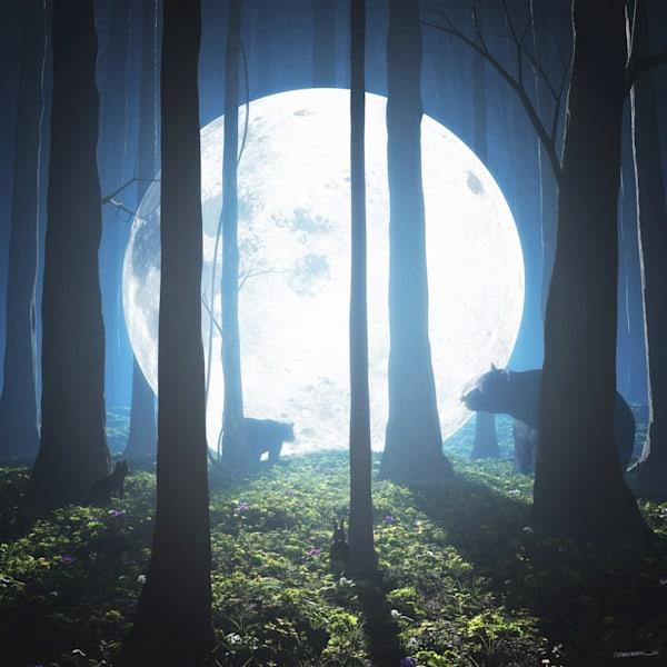 Moon Landing | Cynthia Decker