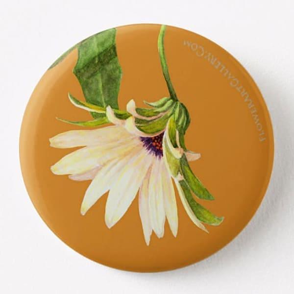 Osteospermum Bloom on Yellow Button