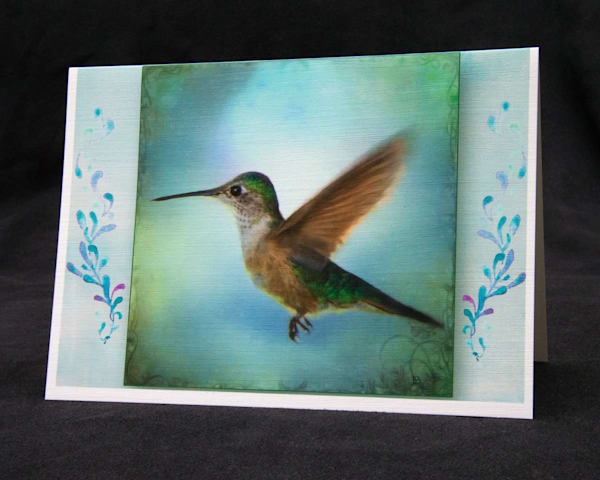 Hummingbird Photography fine art photo