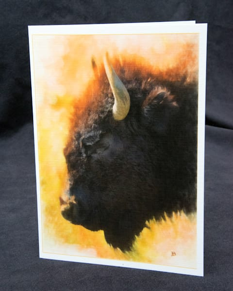 Lone Bison art Photograph
