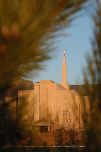 Albuquerque Temple - Through the Trees