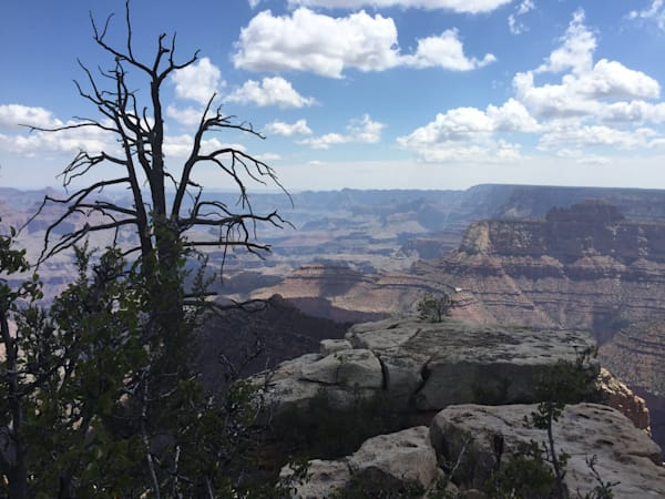Grandview Point Grand Canyon Art | BBrom ART