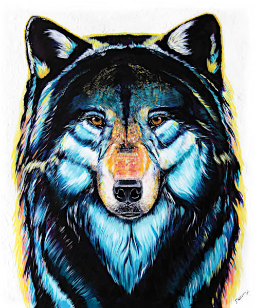 Colorful wolf canadian animalize collection