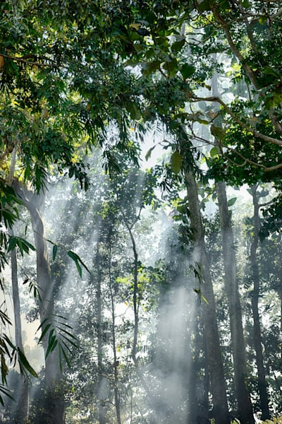 Heavenly Light | Tropical Landscape Art Photography Print
