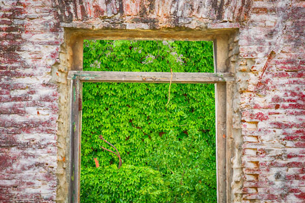 Colonia Ruin Window View | Nature Art Photography