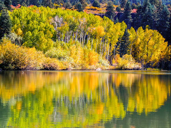 Ouray Lake Reflection | Nature Art Photography