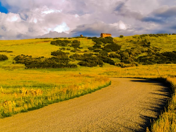 Golden Colorado Mountain Field | Nature Art Photography