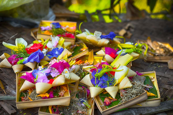 Balinese Offerings II | Nature Art Photography