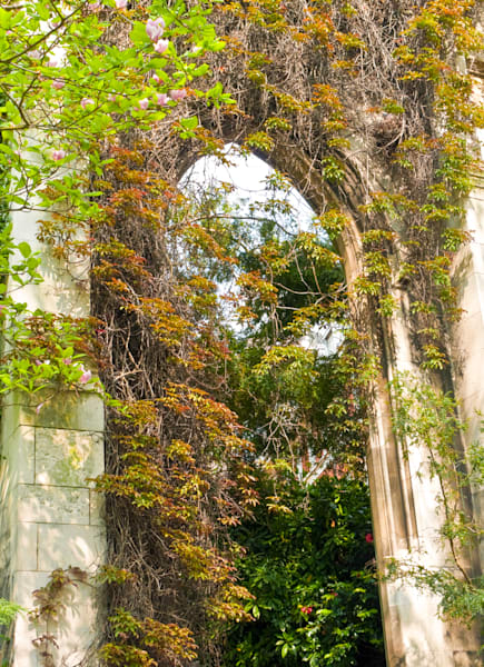 St Dunstan In The East | Nature Art Photography