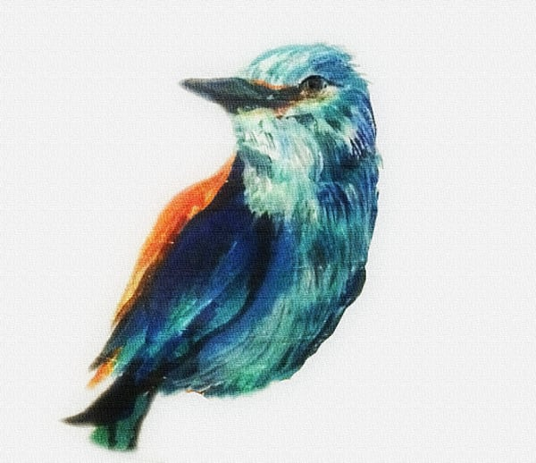 Pretty Bird Art | Art By Dana
