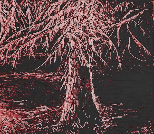 Carved Tree Art | Art By Dana