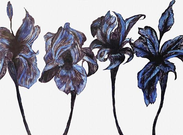 Iris  Art | Art By Dana