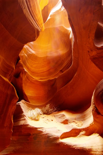 Slot Canyon Tumbleweed print, Jim Parkin Fine Art Photography