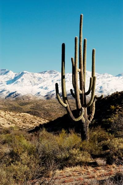 A desert landscape print, Jim Parkin Fine Art Photography