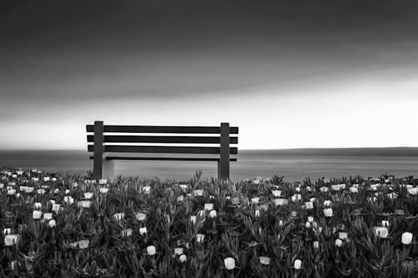 Together Alone Photography Art | bodhi smith photography