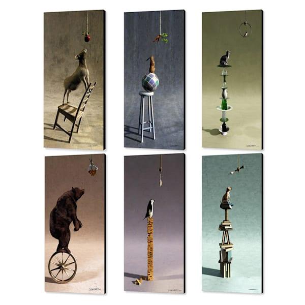 Cynthia Decker | Equilibrium Set