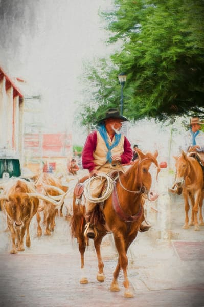 The Herd Cowhand on His Horse in the Stockyards