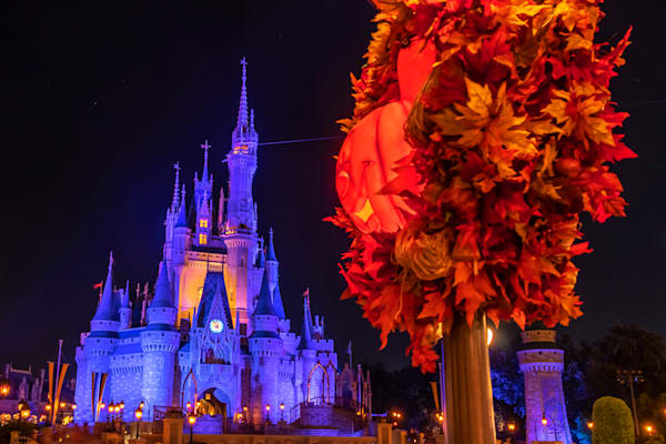Magic Kingdom Halloween 2 - MNSSHP Photos | William Drew